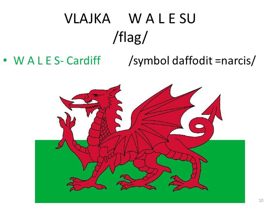 10 VLAJKA W A L E SU /flag/ W A L E S- Cardiff /symbol daffodit =narcis/