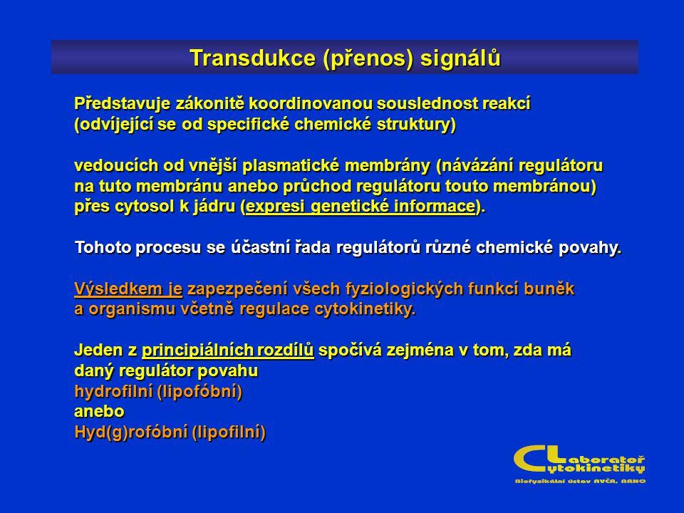 Transdukce (přenos) signálů Představuje zákonitě koordinovanou souslednost reakcí (odvíjející se od specifické chemické struktury) vedoucích od vnější plasmatické membrány (návázání regulátoru na tuto membránu anebo průchod regulátoru touto membránou) přes cytosol k jádru (expresi genetické informace).