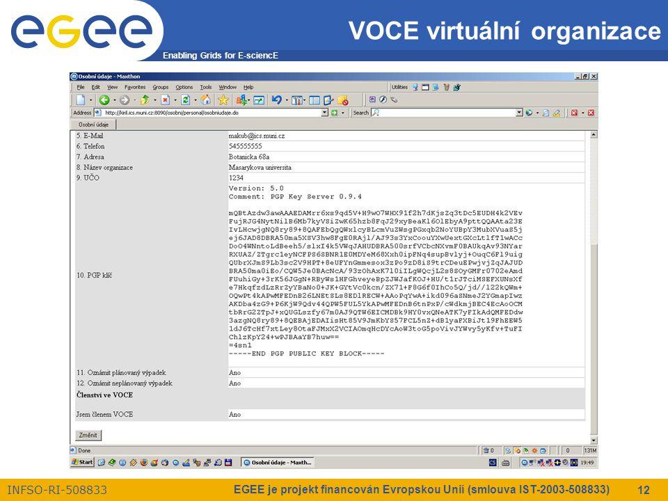 Enabling Grids for E-sciencE INFSO-RI-508833 EGEE je projekt financován Evropskou Unií (smlouva IST-2003-508833) 12 VOCE virtuální organizace