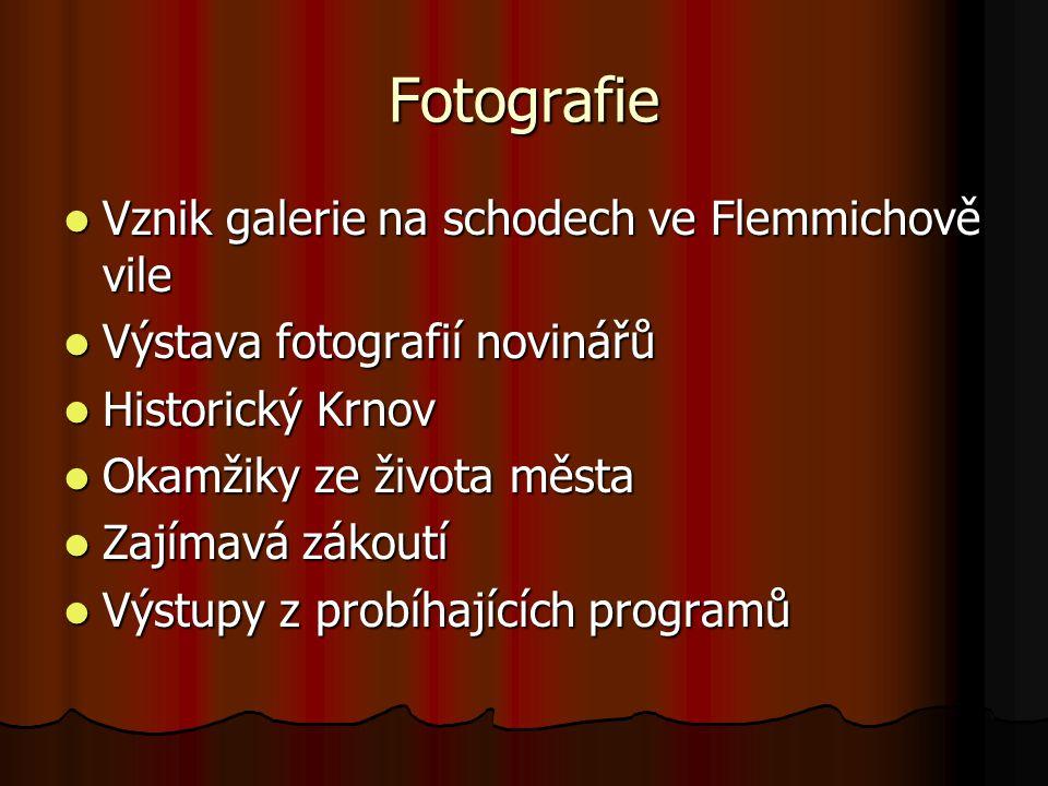 Fotografie Vznik galerie na schodech ve Flemmichově vile Vznik galerie na schodech ve Flemmichově vile Výstava fotografií novinářů Výstava fotografií