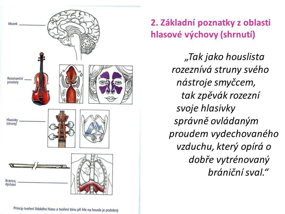 """2. Základní poznatky z oblasti hlasové výchovy (shrnutí) """"Tak jako houslista rozeznívá struny svého nástroje smyčcem, tak zpěvák rozezní svoje hlasivk"""