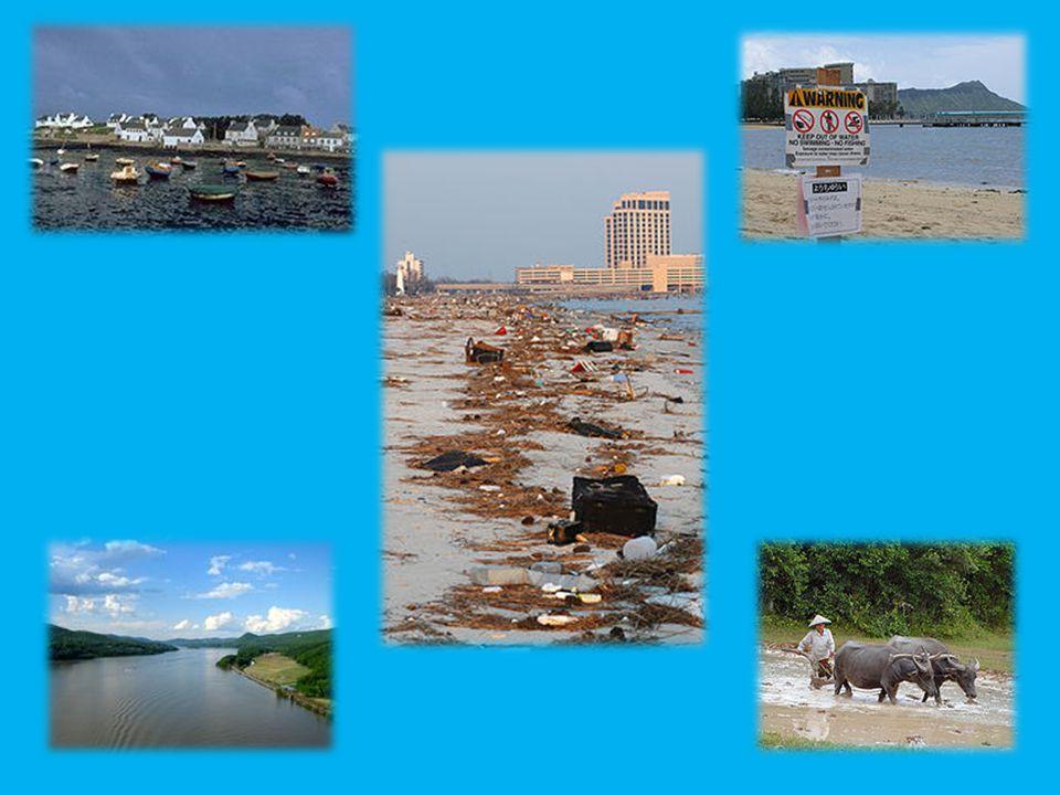 Metody stanovení znečištění vody Dálkový průzkum Země Fyzikální vyšetření (společný fyzické testy vody patří teplota, koncentrace sušiny a zákal.) Chemické testy (měření pH, určení množství dusičnanů, fosforu, kovů, oleje, maziva, uhlovodíků apod.) Kvantitativní analýza (je metoda, kterou se zjišťuje množství neznámé látky v roztoku) Kvalitativní analýza (je soubor metod jimiž se zjišťuje výskyt neznámé látky v roztoku.) Biologické testování (Biologické zkoušky zahrnuje použití rostlin, zvířat anebo mikrobiologických ukazatelů pro sledování stavu vodního ekosystému) Mikrobiologický rozbor vody (založen na sledování možného výskytu baktérií s možným patogenním vlivem na člověka.