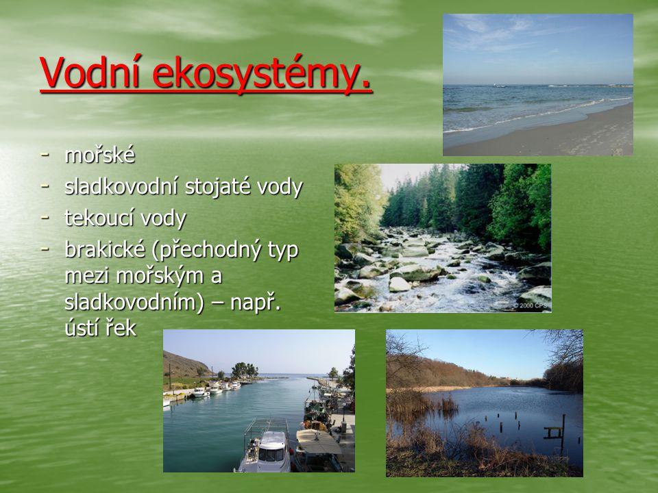 Vodní ekosystémy. - mořské - sladkovodní stojaté vody - tekoucí vody - brakické (přechodný typ mezi mořským a sladkovodním) – např. ústí řek