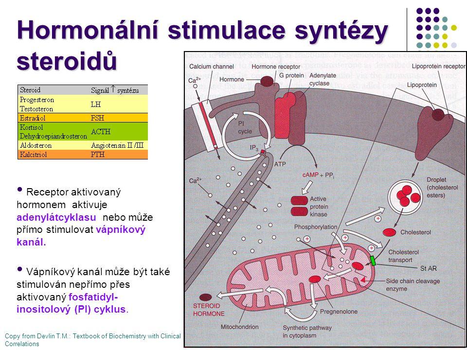 Hormonální stimulace syntézy steroidů Receptor aktivovaný hormonem aktivuje adenylátcyklasu nebo může přímo stimulovat vápníkový kanál. Vápníkový kaná