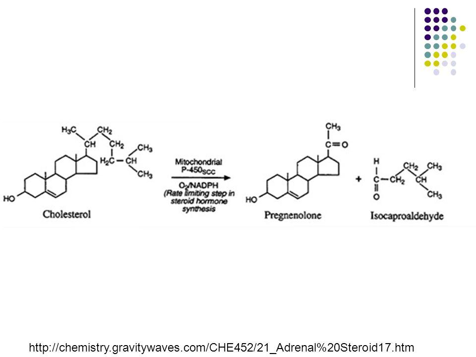 http://chemistry.gravitywaves.com/CHE452/21_Adrenal%20Steroid17.htm