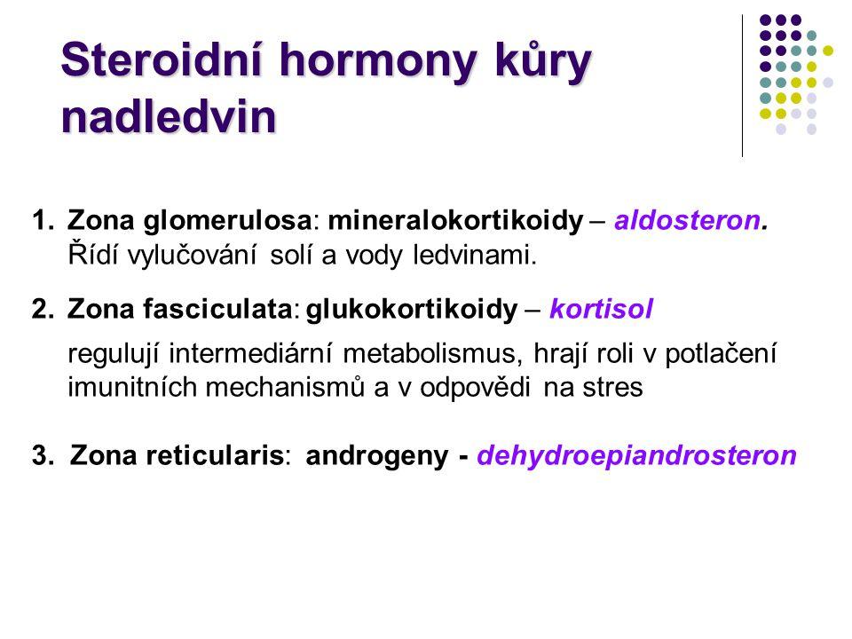 1.Zona glomerulosa: mineralokortikoidy – aldosteron. Řídí vylučování solí a vody ledvinami. 2.Zona fasciculata: glukokortikoidy – kortisol regulují in