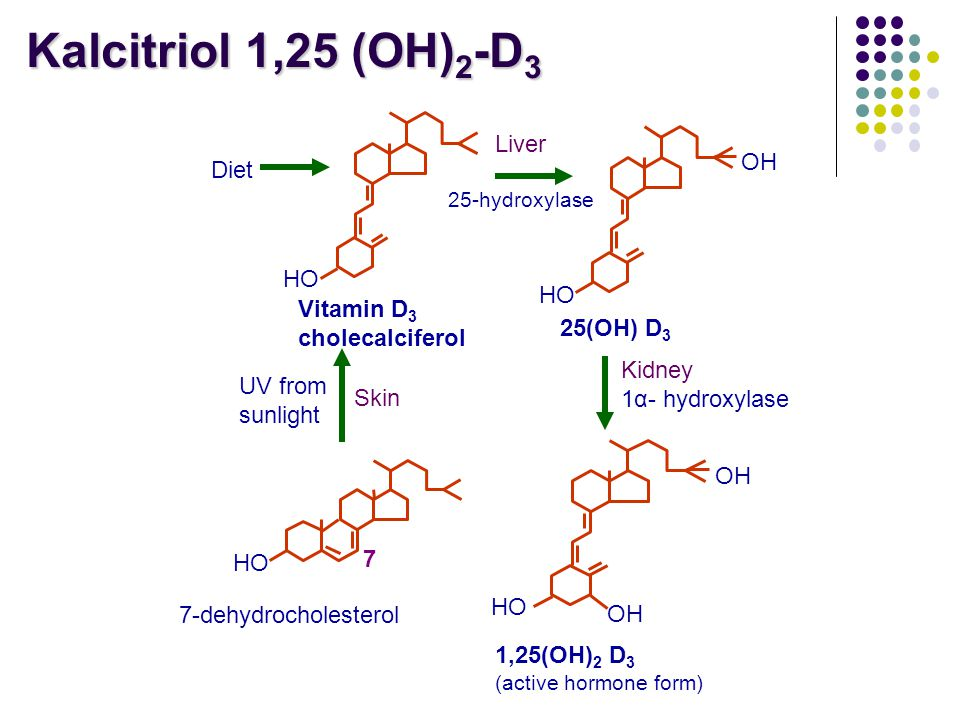 HO Vitamin D 3 cholecalciferol Diet HO OH 25(OH) D 3 Liver 25-hydroxylase OH HO OH 1,25(OH) 2 D 3 (active hormone form) Kidney 1α- hydroxylase HO 7 7-