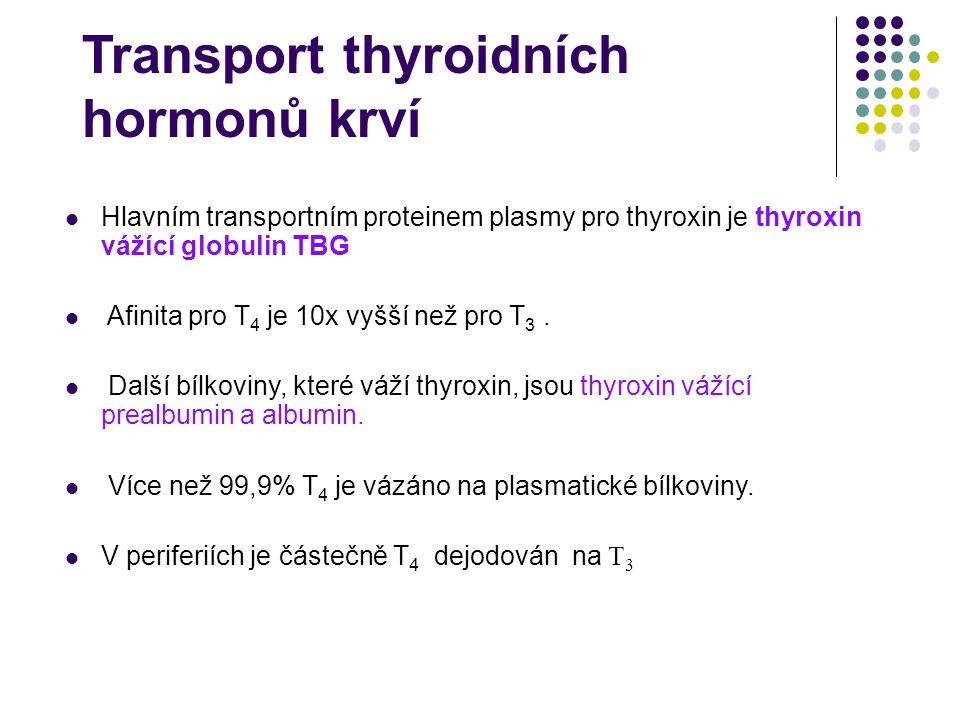 Transport thyroidních hormonů krví Hlavním transportním proteinem plasmy pro thyroxin je thyroxin vážící globulin TBG Afinita pro T 4 je 10x vyšší než