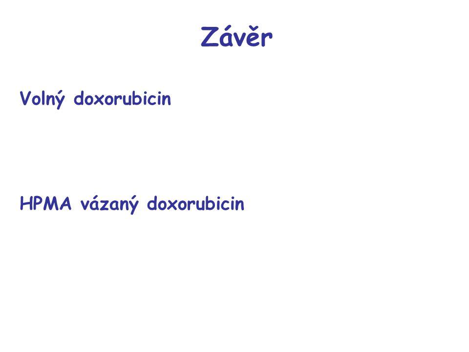 Závěr Volný doxorubicin HPMA vázaný doxorubicin