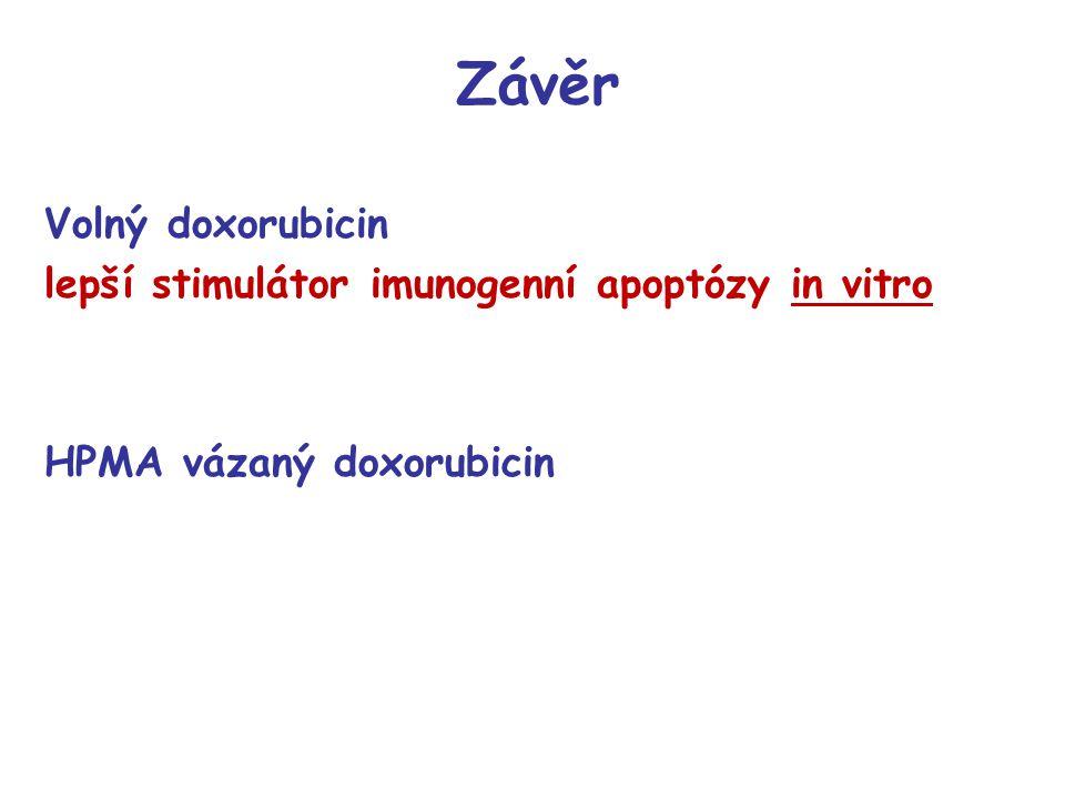 Závěr Volný doxorubicin lepší stimulátor imunogenní apoptózy in vitro HPMA vázaný doxorubicin
