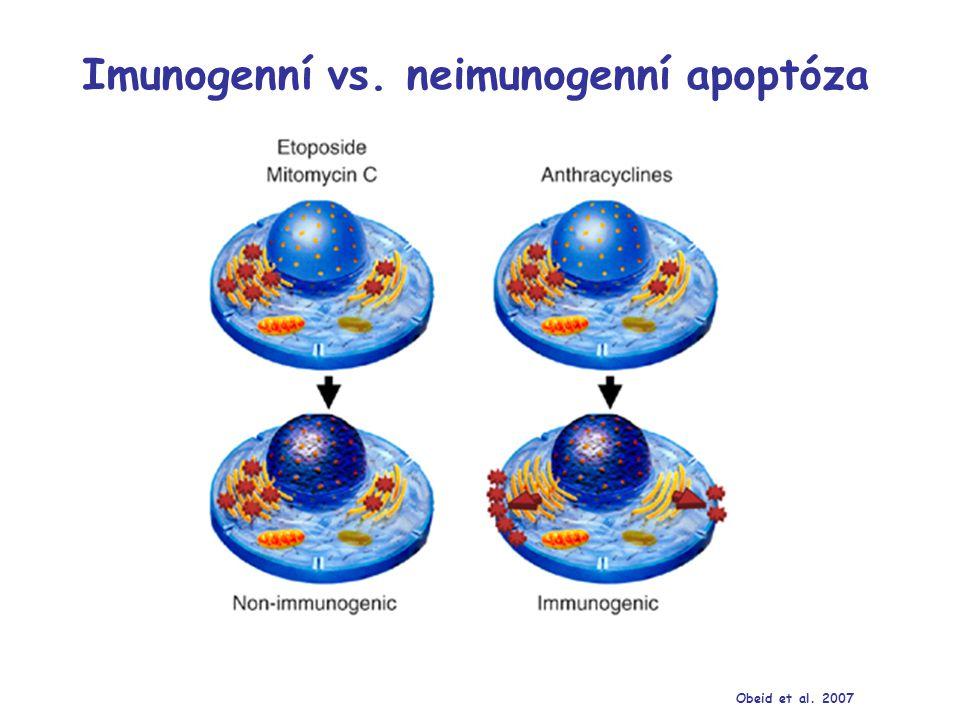 Molekulární mechanismy imunogenní apoptózy Zitvogel et al. 2008