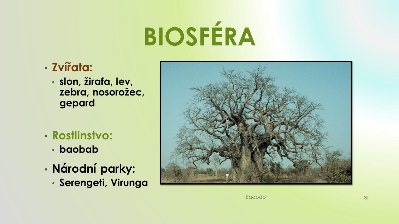 BIOSFÉRA Zvířata: slon, žirafa, lev, zebra, nosorožec, gepard Rostlinstvo: baobab Národní parky: Serengeti, Virunga [3][3] Baobab