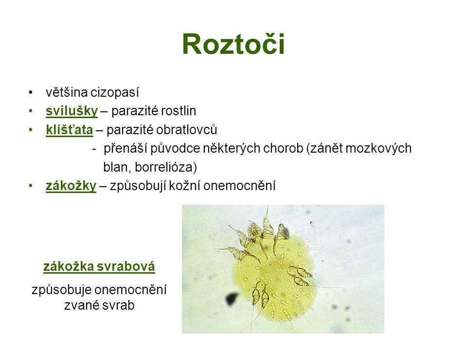 Roztoči většina cizopasí svilušky – parazité rostlin klíšťata – parazité obratlovců - přenáší původce některých chorob (zánět mozkových blan, borrelióza) zákožky – způsobují kožní onemocnění zákožka svrabová způsobuje onemocnění zvané svrab