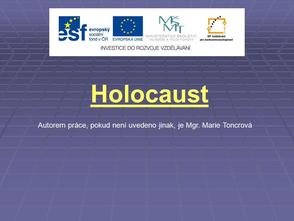 Holocaust Autorem práce, pokud není uvedeno jinak, je Mgr. Marie Toncrová