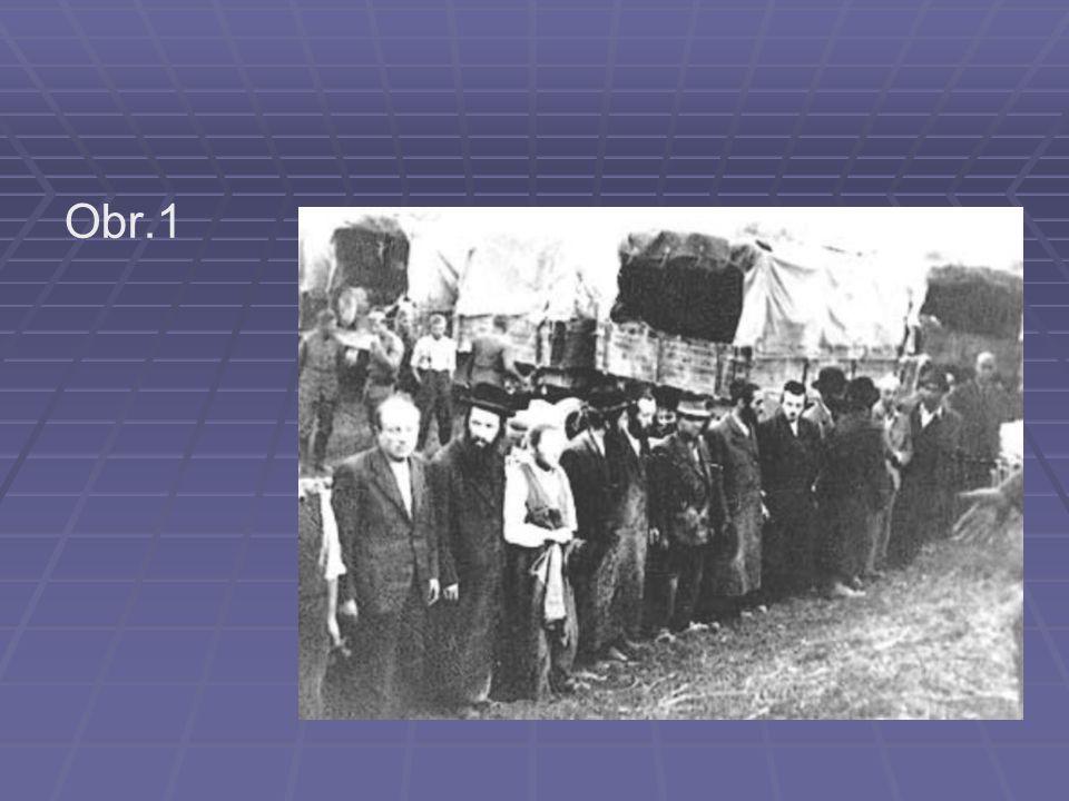 Protižidovská opatření v Německu   1935 Norimberské rasové zákony – vylučovaly rasově méněcenné skupiny obyvatel ze společnosti (německá krev, Židé, míšenci, podle rasového původu prarodičů)   Židé vyčleněni ze společnosti   perzekuce Židů   psychologický teror
