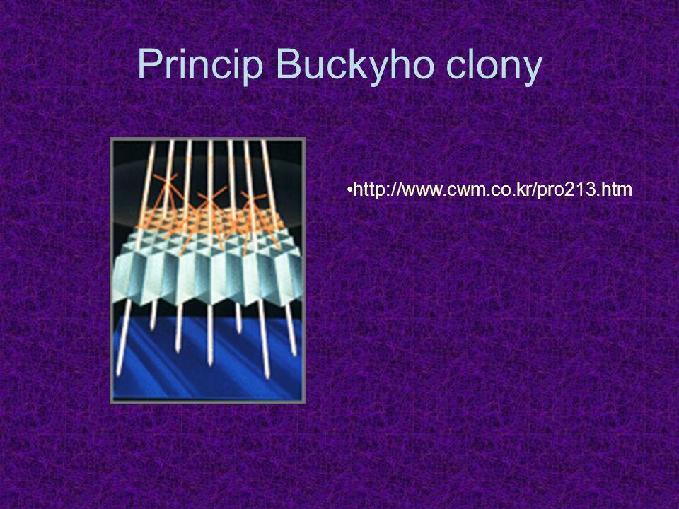 Princip Buckyho clony http://www.cwm.co.kr/pro213.htm