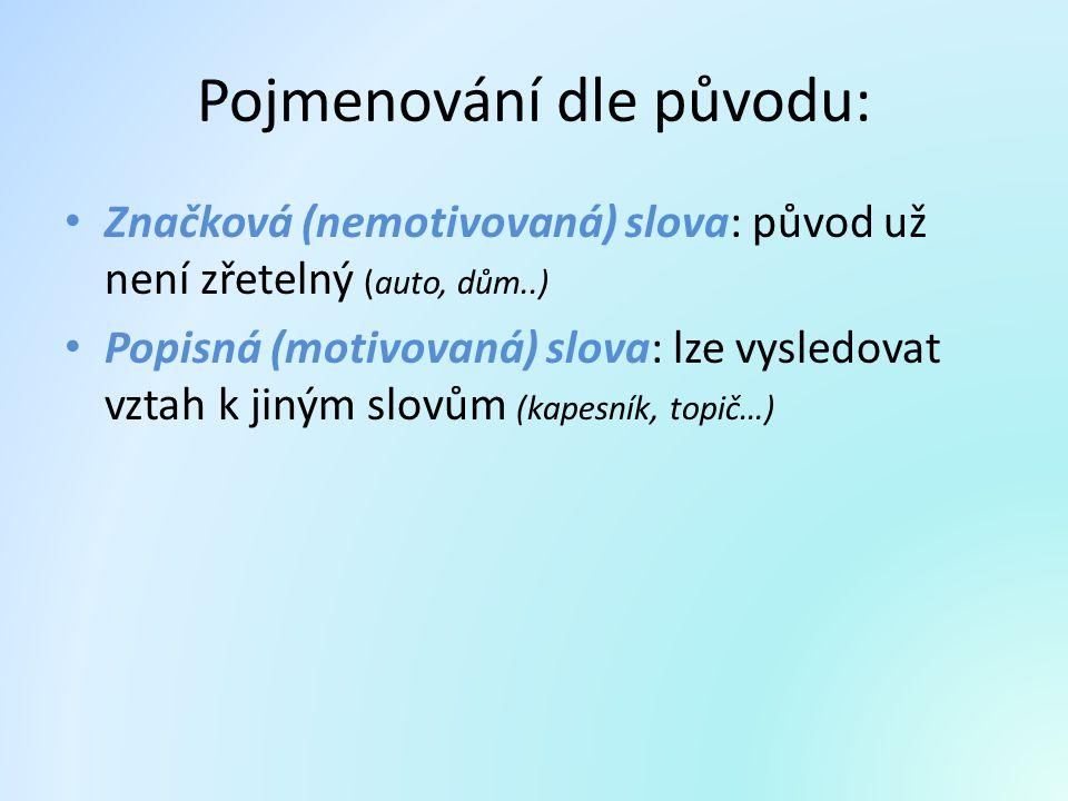 Pojmenování dle původu: Značková (nemotivovaná) slova: původ už není zřetelný (auto, dům..) Popisná (motivovaná) slova: lze vysledovat vztah k jiným s