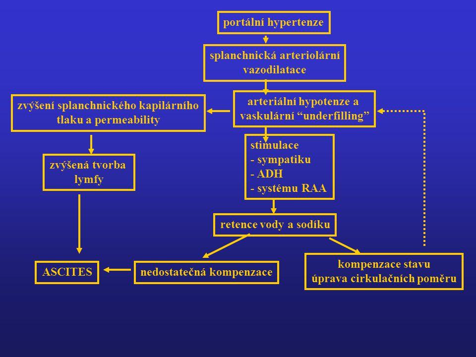 portální hypertenze splanchnická arteriolární vazodilatace arteriální hypotenze a vaskulární underfilling stimulace - sympatiku - ADH - systému RAA retence vody a sodíku kompenzace stavu úprava cirkulačních poměru nedostatečná kompenzace zvýšení splanchnického kapilárního tlaku a permeability zvýšená tvorba lymfy ASCITES