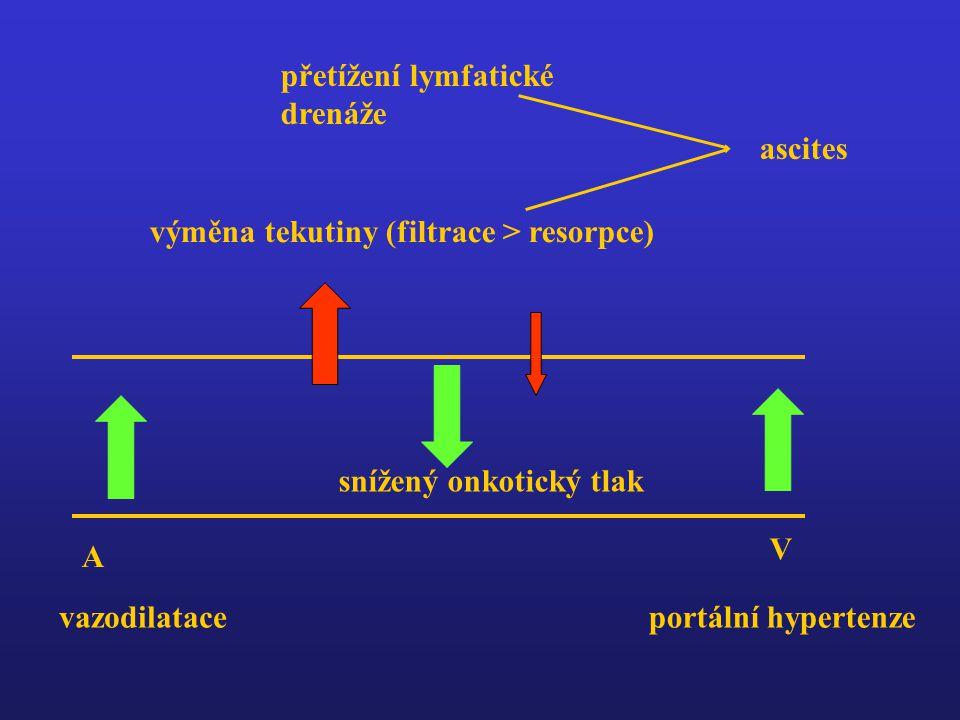A V výměna tekutiny (filtrace > resorpce) vazodilataceportální hypertenze snížený onkotický tlak přetížení lymfatické drenáže ascites