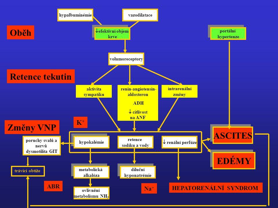 hypalbuminémievazodilatace  efektivní objem krve volumoreceptory  renální perfúze retence sodíku a vody hypokalémie  aktivita sympatiku  renin-angiotensin- aldosteron  ADH  citlivost na ANF EDÉMY ASCITES metabolická alkalóza diluční hyponatrémie ovlivnění metabolismu NH 3 poruchy svalů a nervů dysmotilita GIT trávicí obtíže K+K+ Na + ABR portální hypertenze intrarenální změny Oběh Retence tekutin Změny VNP HEPATORENÁLNÍ SYNDROM