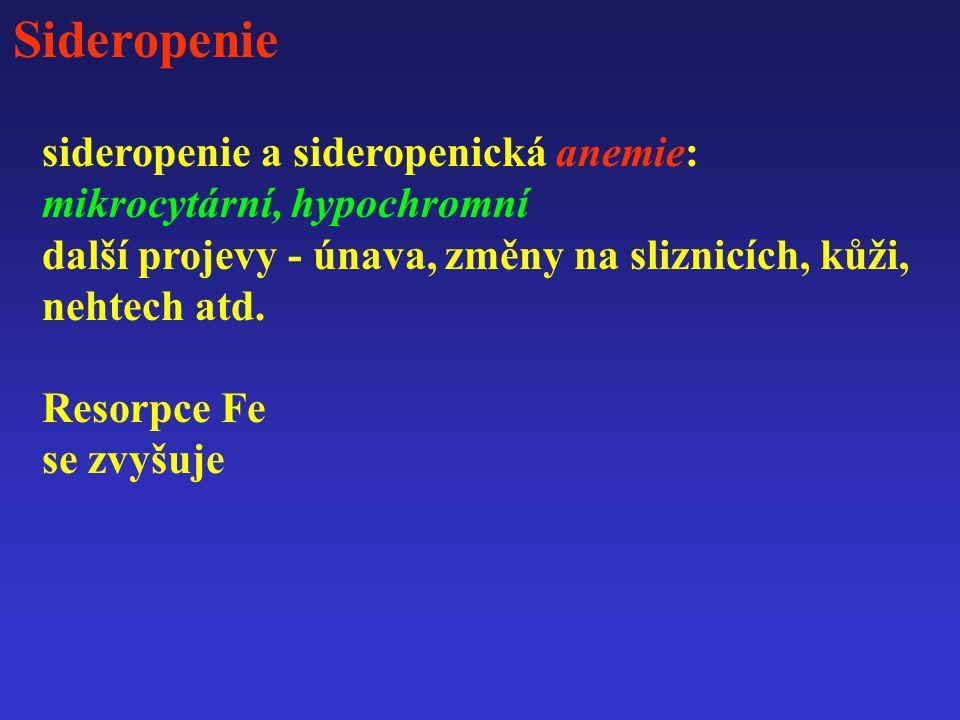 Sideropenie sideropenie a sideropenická anemie: mikrocytární, hypochromní další projevy - únava, změny na sliznicích, kůži, nehtech atd. Resorpce Fe s