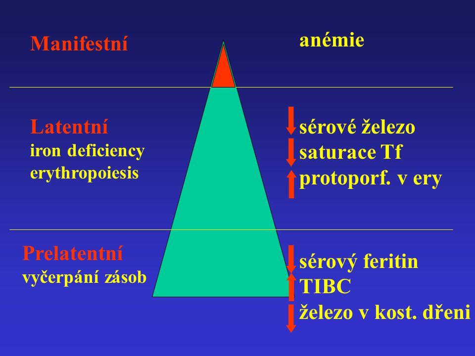anémie Manifestní Latentní iron deficiency erythropoiesis Prelatentní vyčerpání zásob sérové železo saturace Tf protoporf. v ery sérový feritin TIBC ž