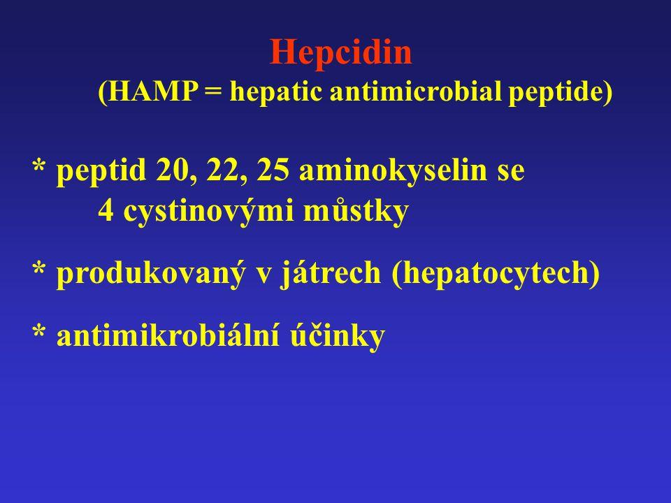 Hepcidin (HAMP = hepatic antimicrobial peptide) * peptid 20, 22, 25 aminokyselin se 4 cystinovými můstky * produkovaný v játrech (hepatocytech) * antimikrobiální účinky