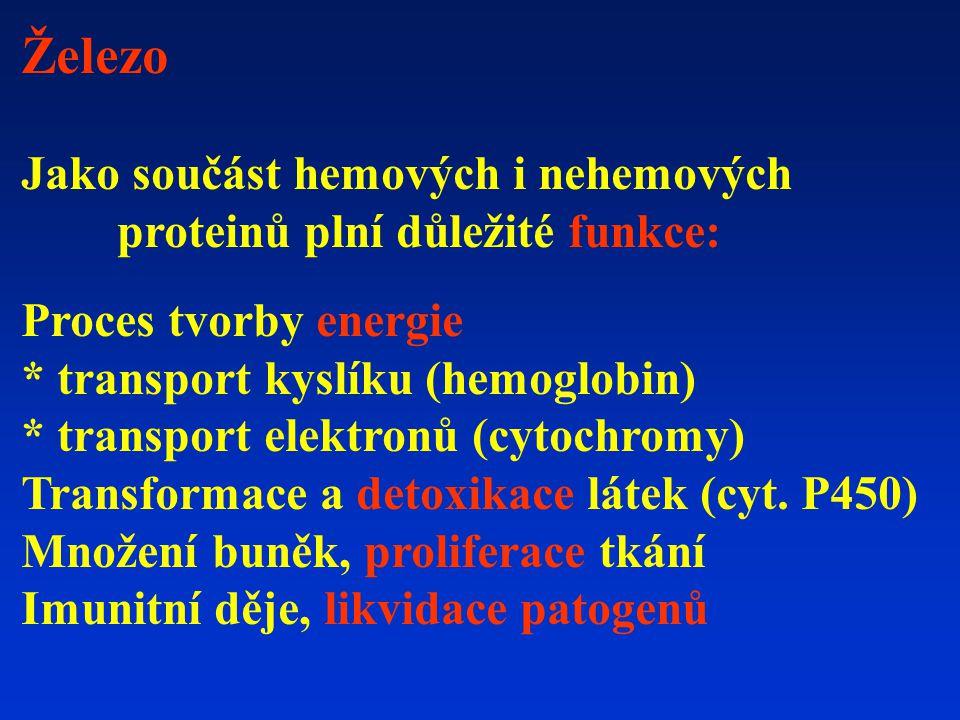 Železo Jako součást hemových i nehemových proteinů plní důležité funkce: Proces tvorby energie * transport kyslíku (hemoglobin) * transport elektronů (cytochromy) Transformace a detoxikace látek (cyt.