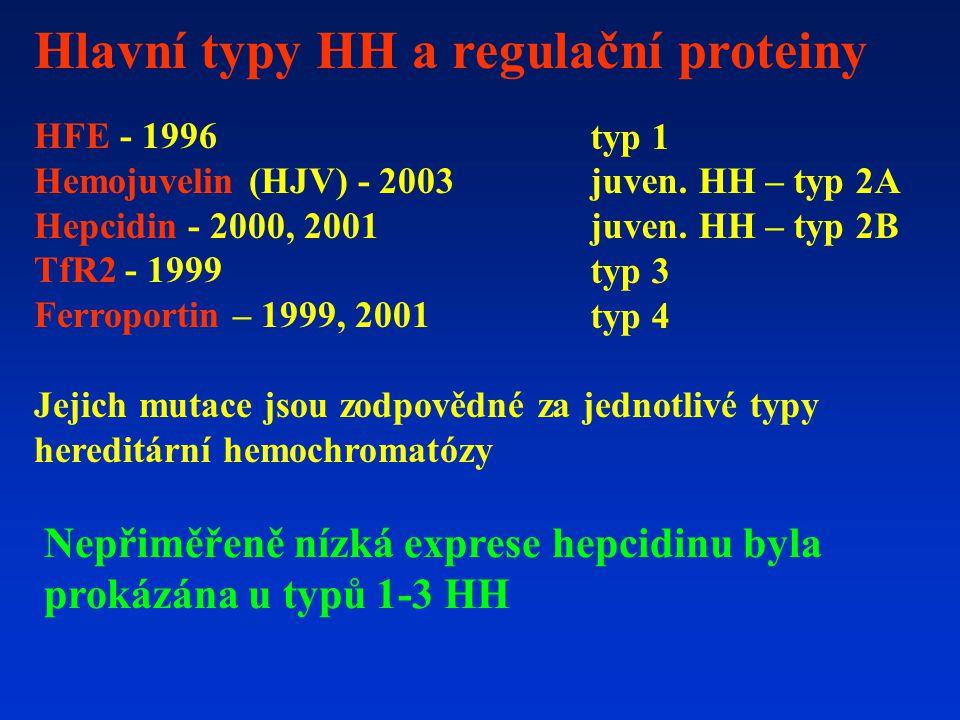 Hlavní typy HH a regulační proteiny HFE - 1996 Hemojuvelin (HJV) - 2003 Hepcidin - 2000, 2001 TfR2 - 1999 Ferroportin – 1999, 2001 Jejich mutace jsou zodpovědné za jednotlivé typy hereditární hemochromatózy typ 1 juven.