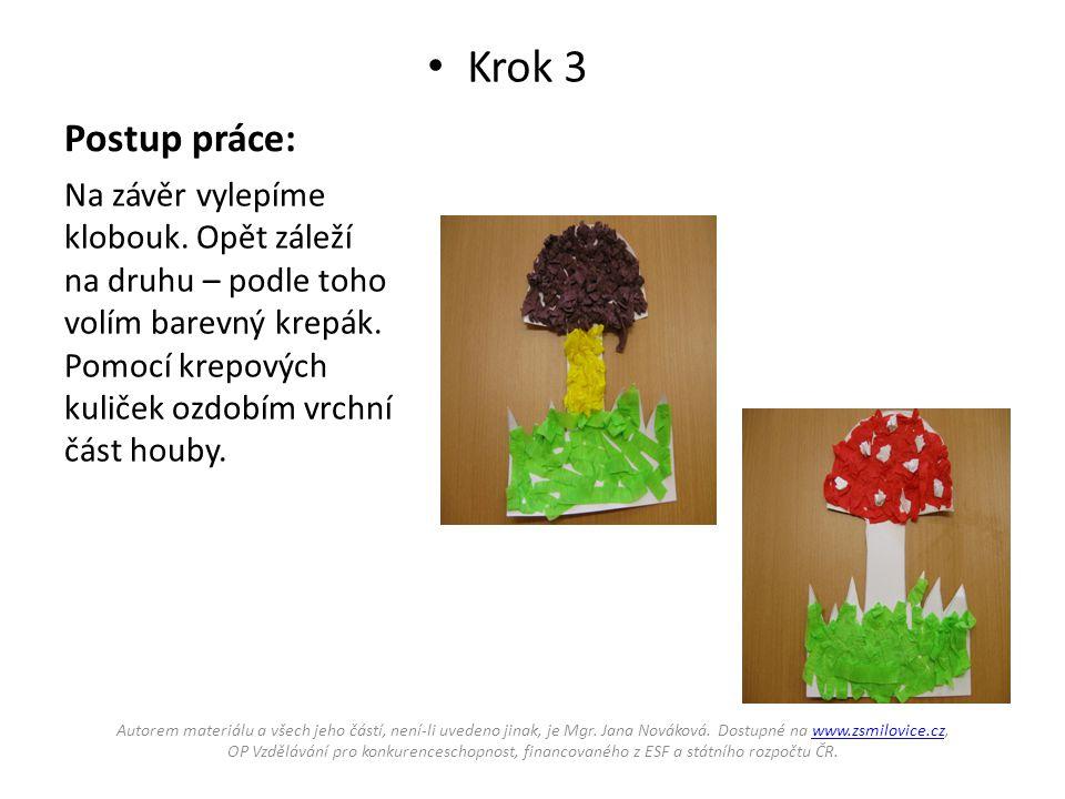 Postup práce: Krok 3 Na závěr vylepíme klobouk. Opět záleží na druhu – podle toho volím barevný krepák. Pomocí krepových kuliček ozdobím vrchní část h
