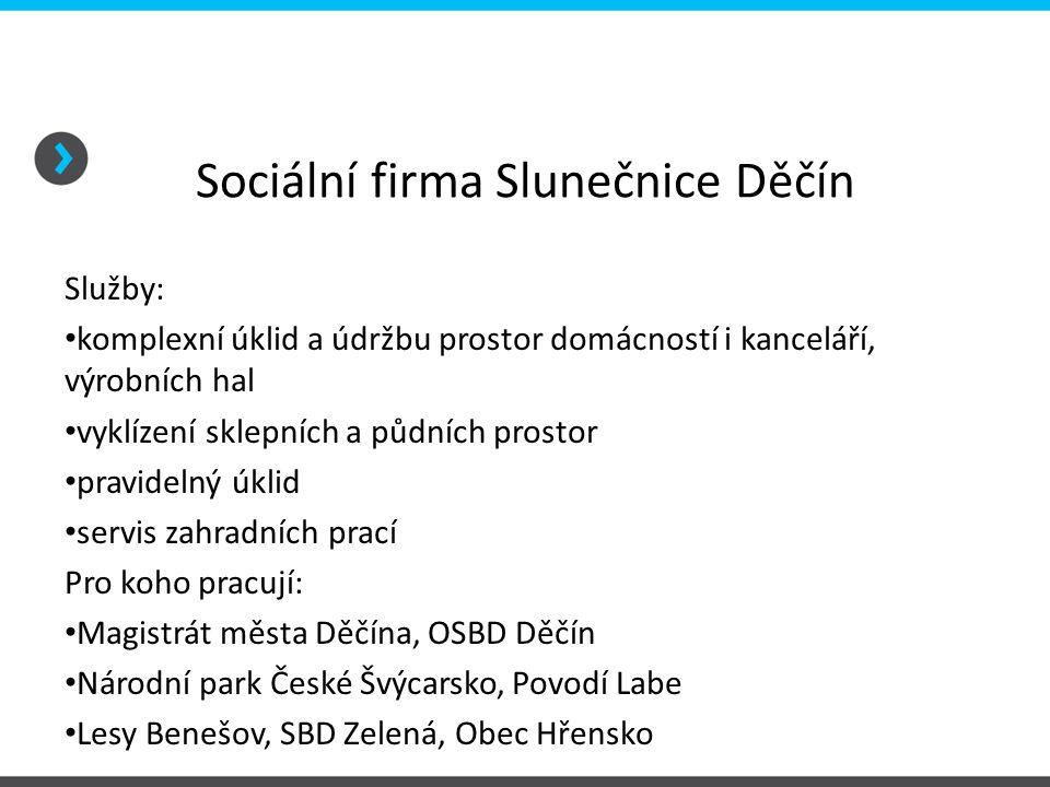 Sociální firma Slunečnice Děčín Služby: komplexní úklid a údržbu prostor domácností i kanceláří, výrobních hal vyklízení sklepních a půdních prostor p