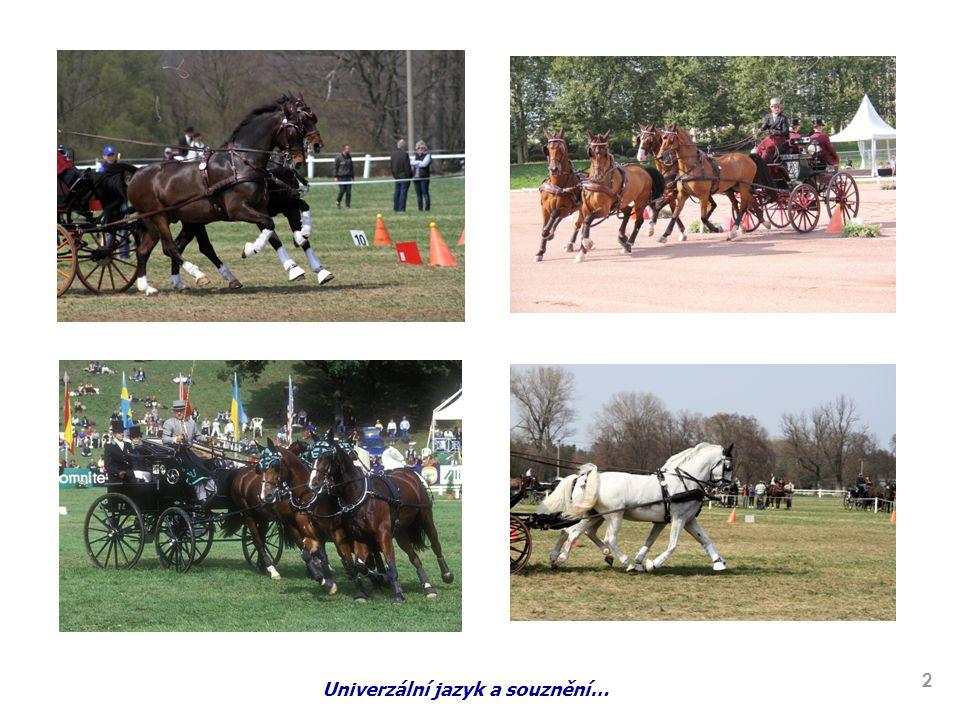 HISTORIE VOZATAJSTVÍ Historie vozatajství sahá do doby, kdy byl koňský povoz základním dopravním prostředkem.