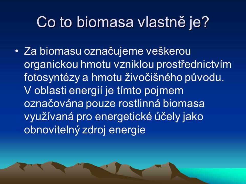 Co to biomasa vlastně je? Za biomasu označujeme veškerou organickou hmotu vzniklou prostřednictvím fotosyntézy a hmotu živočišného původu. V oblasti e