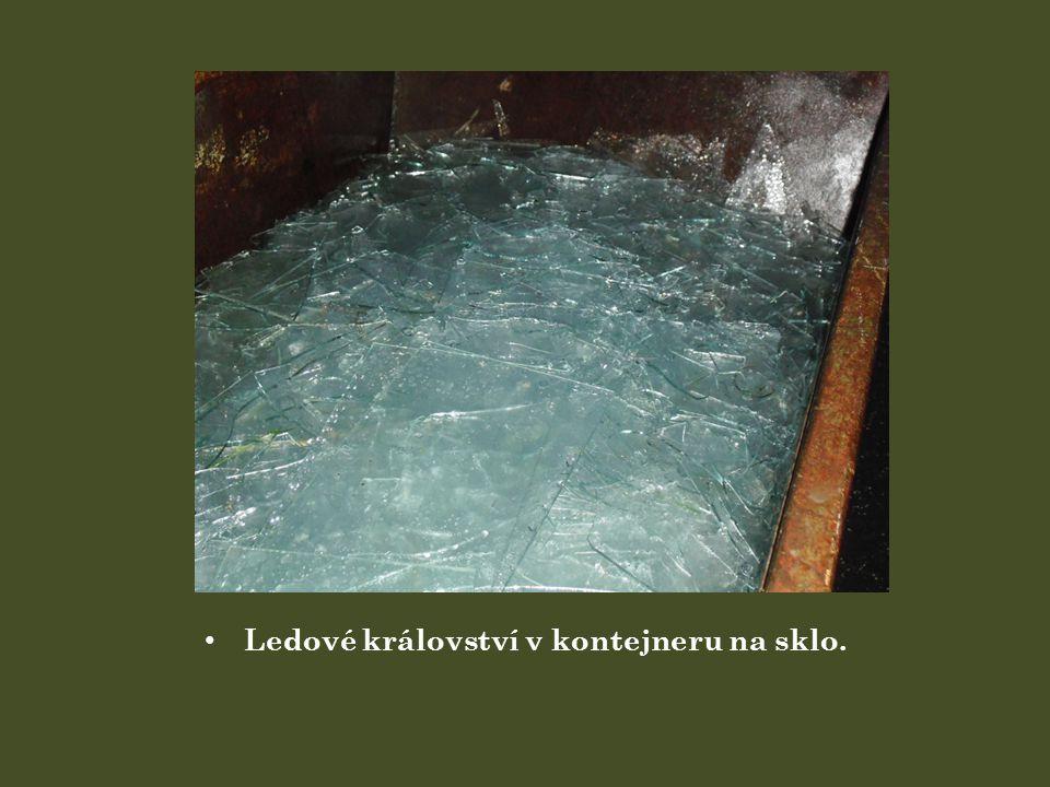 Ledové království v kontejneru na sklo.