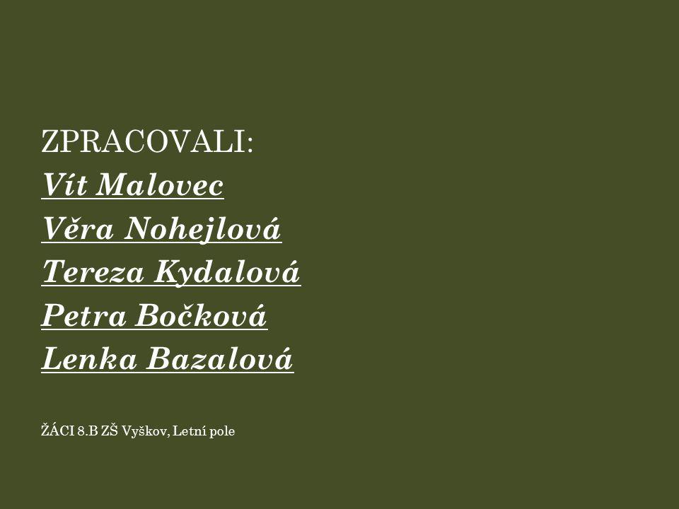 ZPRACOVALI: Vít Malovec Věra Nohejlová Tereza Kydalová Petra Bočková Lenka Bazalová ŽÁCI 8.B ZŠ Vyškov, Letní pole