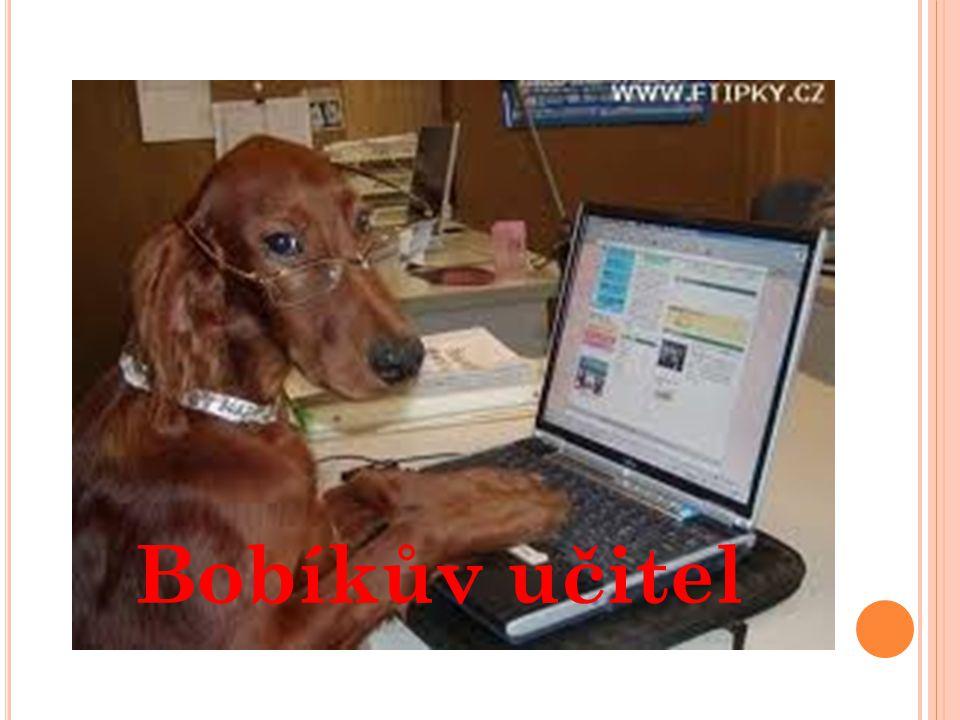 Bobíkův učitel
