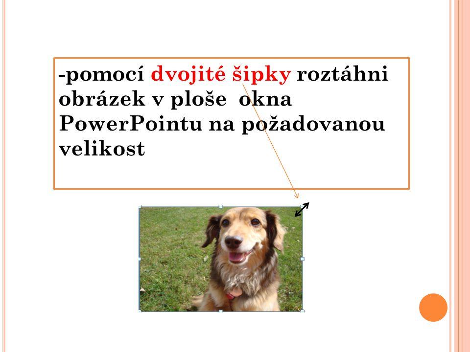 -pomocí dvojité šipky roztáhni obrázek v ploše okna PowerPointu na požadovanou velikost