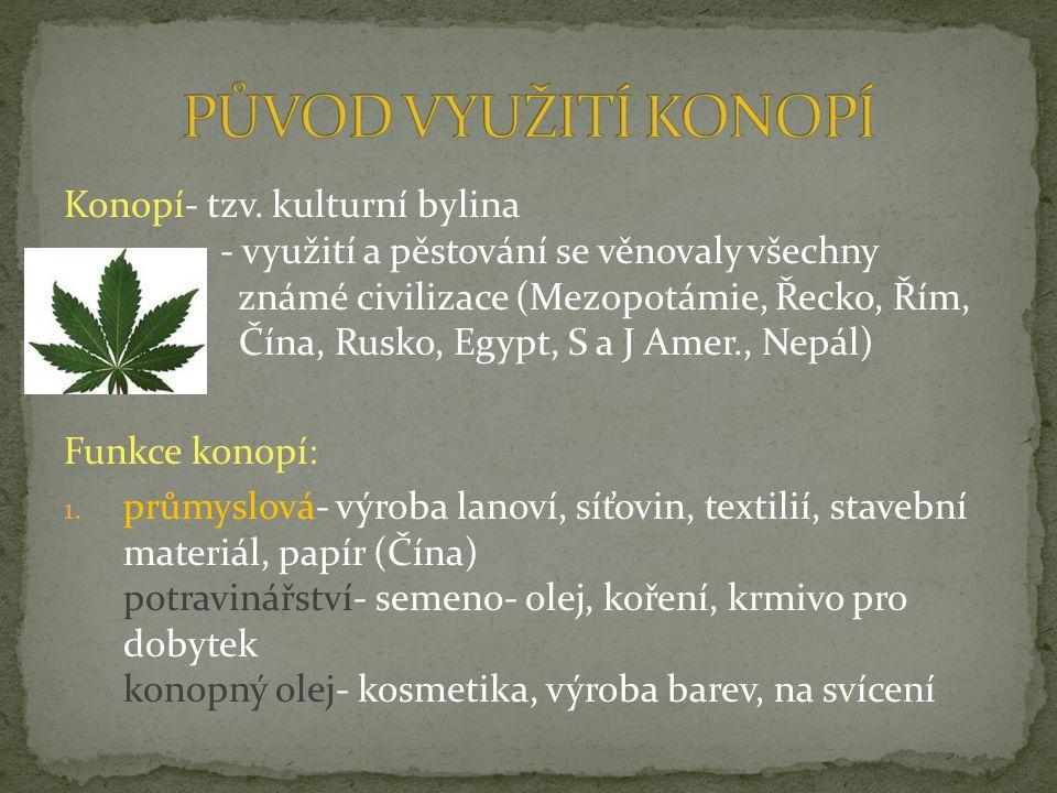 Konopí- tzv. kulturní bylina - využití a pěstování se věnovaly všechny známé civilizace (Mezopotámie, Řecko, Řím, Čína, Rusko, Egypt, S a J Amer., Nep