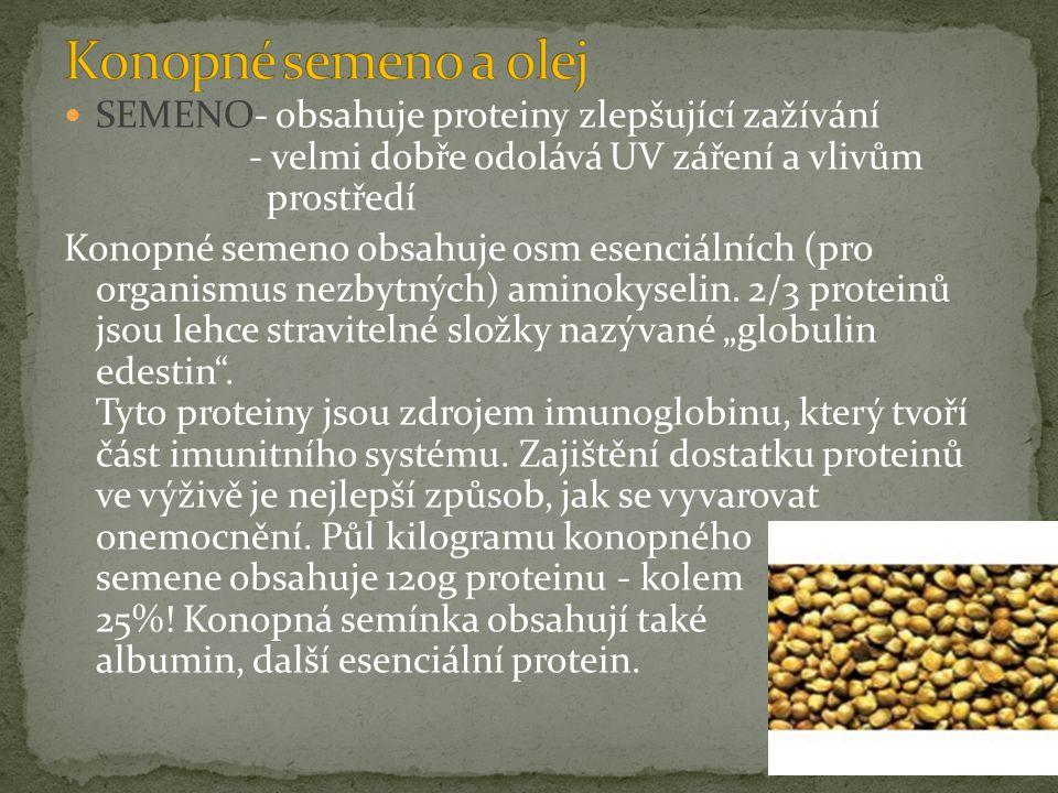 SEMENO- obsahuje proteiny zlepšující zažívání - velmi dobře odolává UV záření a vlivům prostředí Konopné semeno obsahuje osm esenciálních (pro organismus nezbytných) aminokyselin.