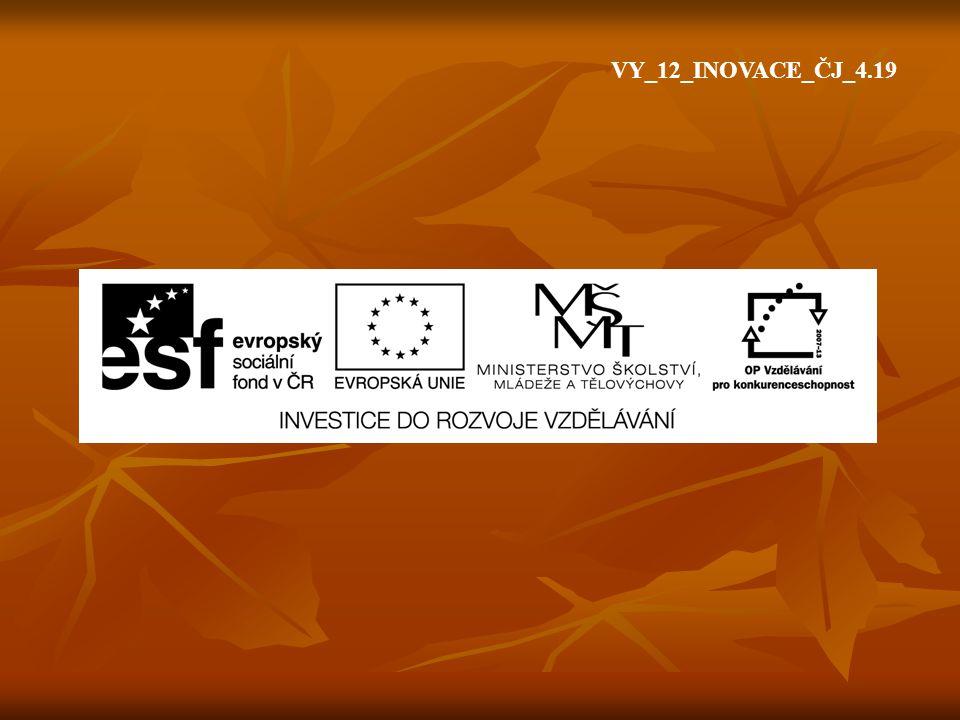VY_12_INOVACE_ČJ_4.19