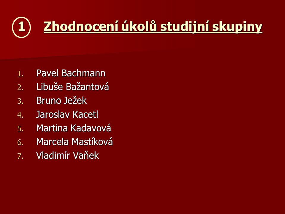 1Zhodnocení úkolů studijní skupiny 1. Pavel Bachmann 2.