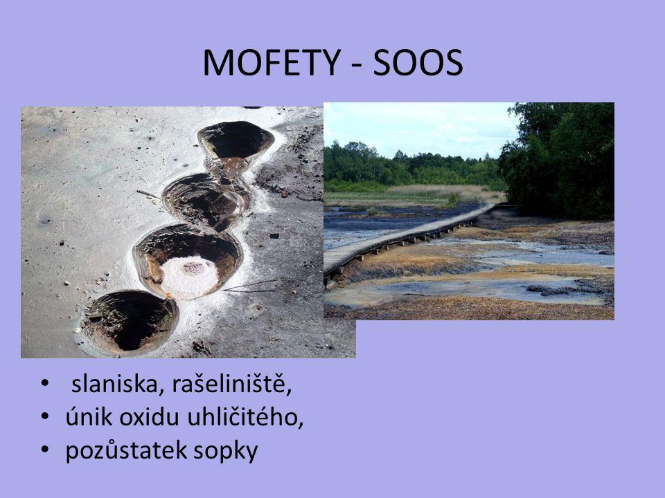 MOFETY - SOOS slaniska, rašeliniště, únik oxidu uhličitého, pozůstatek sopky