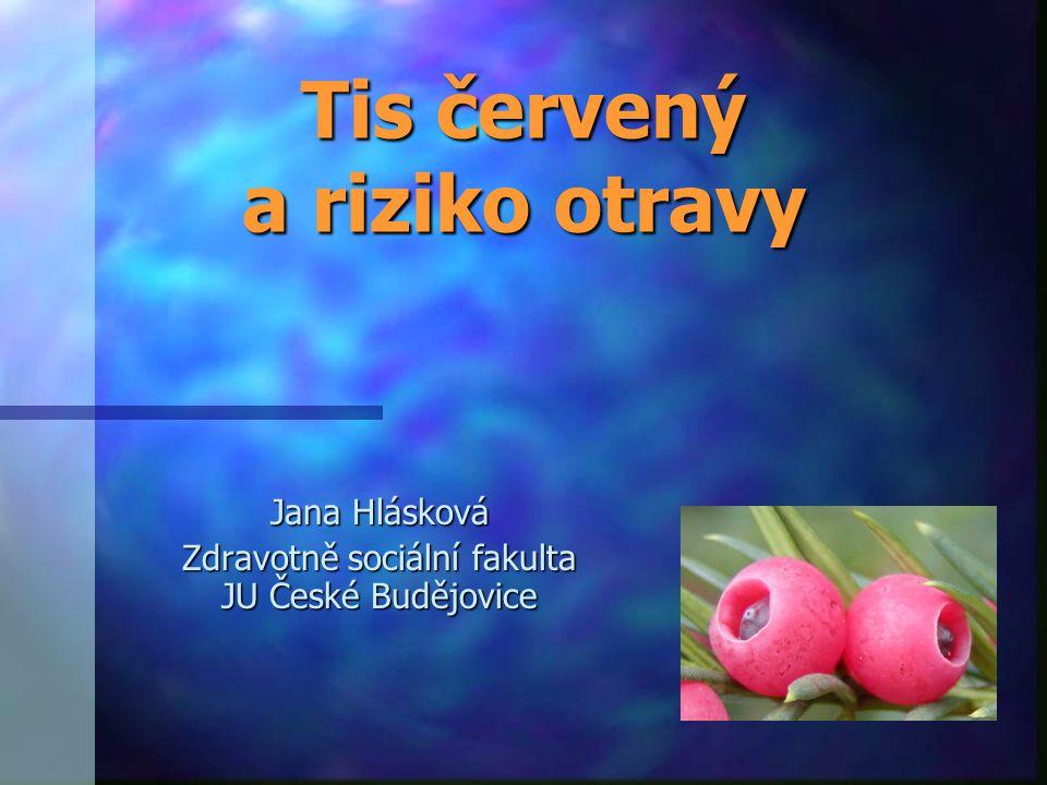Tis červený a riziko otravy Jana Hlásková Zdravotně sociální fakulta JU České Budějovice