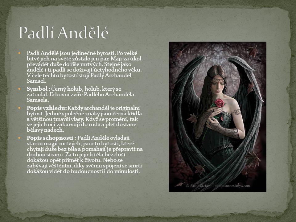 Padlí Andělé jsou jedinečné bytosti. Po velké bitvě jich na světě zůstalo jen pár. Mají za úkol převádět duše do říše mrtvých. Stejně jako andělé i ti