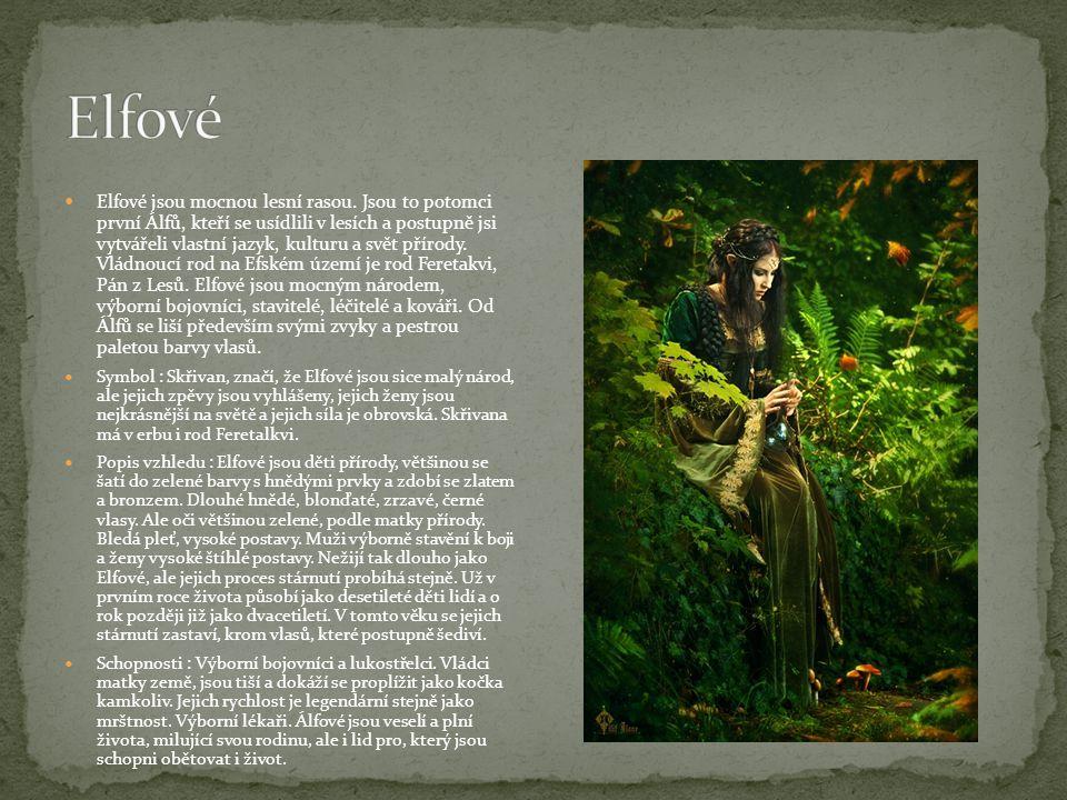 Elfové jsou mocnou lesní rasou. Jsou to potomci první Álfů, kteří se usídlili v lesích a postupně jsi vytvářeli vlastní jazyk, kulturu a svět přírody.