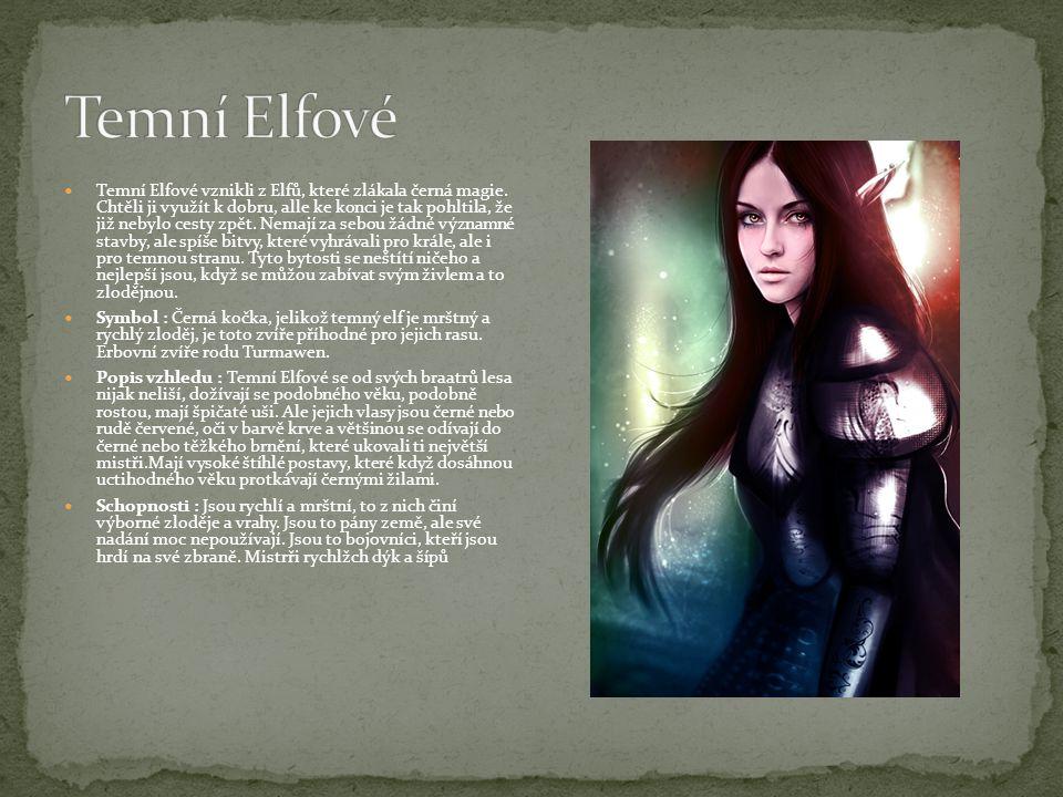Temní Elfové vznikli z Elfů, které zlákala černá magie. Chtěli ji využít k dobru, alle ke konci je tak pohltila, že již nebylo cesty zpět. Nemají za s