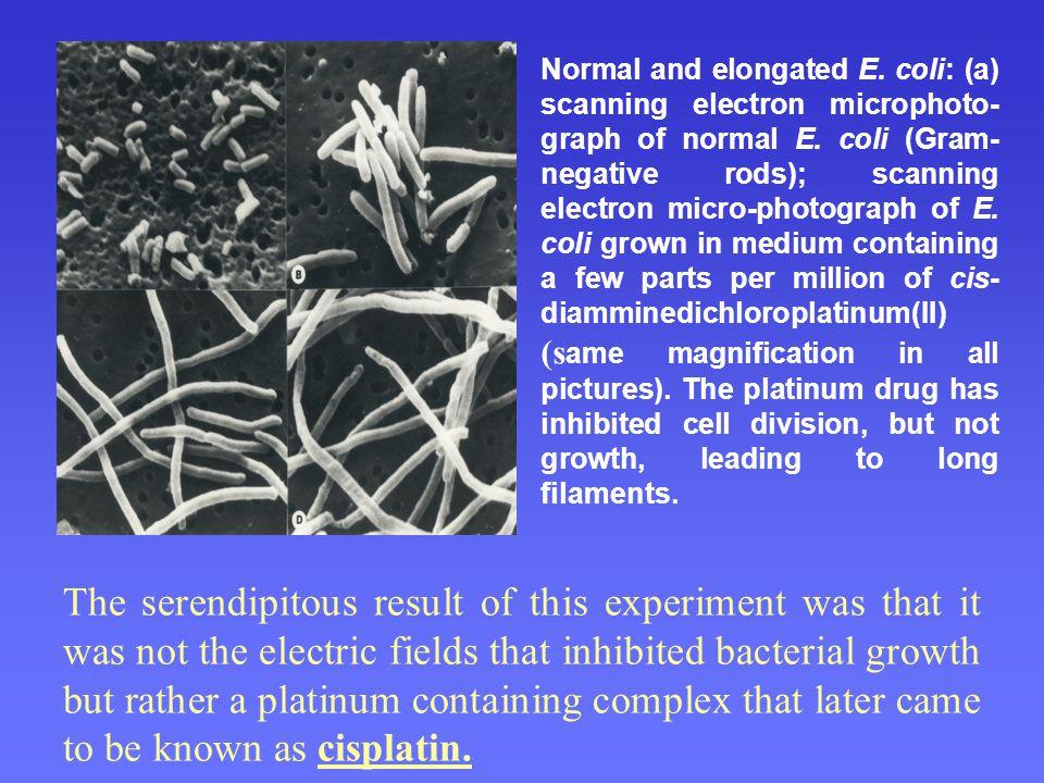 Cisplatina PtPtPtPt Navázání platiny na guanidin v DNA