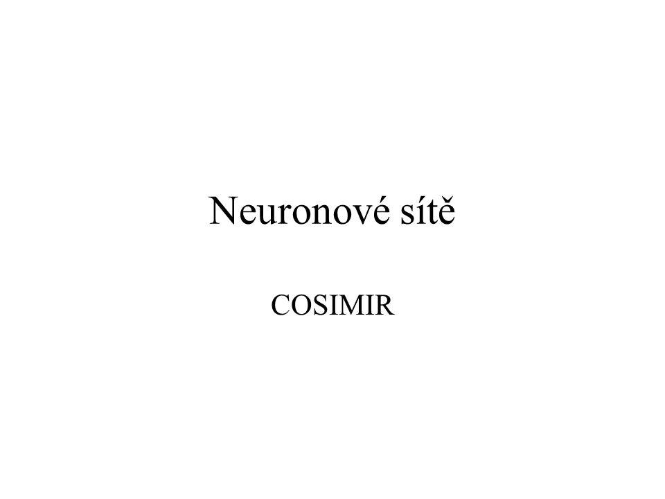 Neuronové sítě COSIMIR