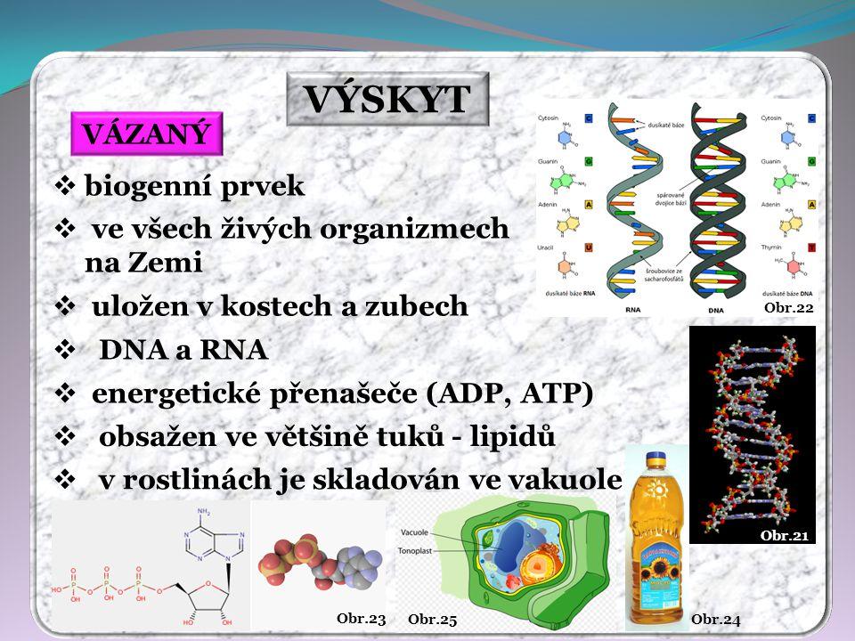 Obr.20 červená Obr.19 modrá Obr.18 zelená Obr.17 Obr.16 apatit kalcit Obr.15 VÝSKYT VOLNÝ VÁZANÝ  volný se na Zemi nevyskytuje  apatit Ca 5 [(F,Cl,OH)(PO 4 ) 3 ]  fosforit Ca 3 (PO 4 ) 2  wavelit 3Al 2 O 3 · 2P 2 O 5 · 12H 2 O  fluoroapatit Ca 5 (PO 4 ) 3 F  vivianit Fe 3 (PO 4 ) 2 · 8H 2 O