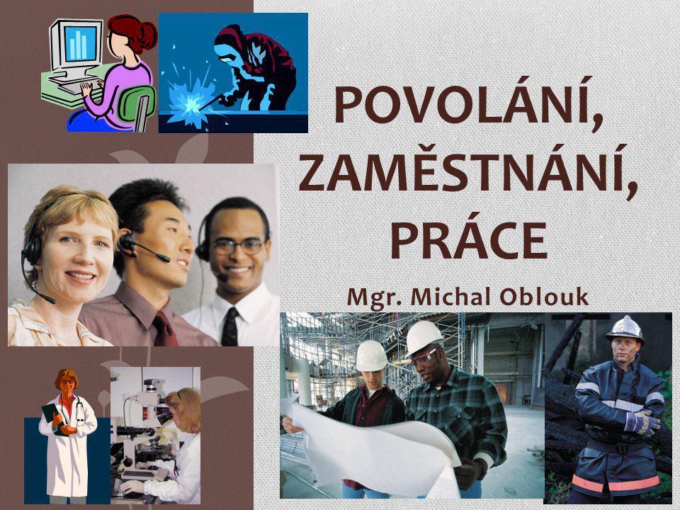 Mgr. Michal Oblouk POVOLÁNÍ, ZAMĚSTNÁNÍ, PRÁCE